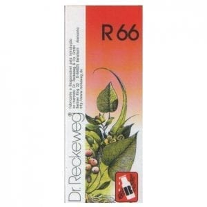 Dr. Reckeweg R66 50ml